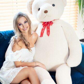 Medvedík Primero